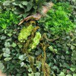jardines-verticales-12